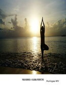 Yoga Business - A Global Perspective