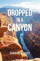 Dropped in a Canyon