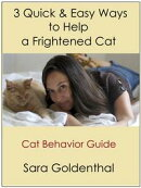 3 Quick & Easy Ways to Help a Frightened Cat: A Cat Behavior Guide
