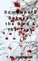 Somewhere Between the Bird & the Tree