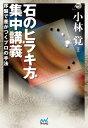 石のヒラキ方 集中講義【電子書籍】[ 小林 覚 ]