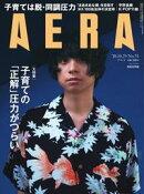 AERA 2018.10.29