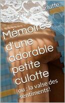 Deux nouvelles coquines : Mémoires d'une adorable petite culotte