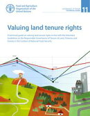 Valuing Land Tenure Rights: A Technical Guide on Valuing Land Tenure Rights in Line with the Voluntary Guide…