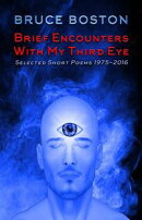 Brief Encounters with my Third Eye: Selected Poems