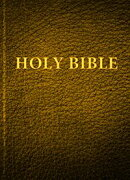 Holy Bible: Darby Translation