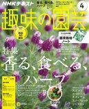 NHK 趣味の園芸 2017年4月号[雑誌]