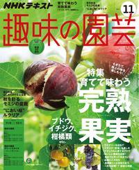 NHK 趣味の園芸 2017年11月号[雑誌]