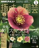 NHK 趣味の園芸 2018年1月号[雑誌]