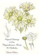 Original Drawings Including Chrysanthemums, Freesias and Rudbeckias