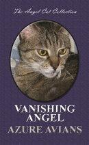 Vanishing Angel