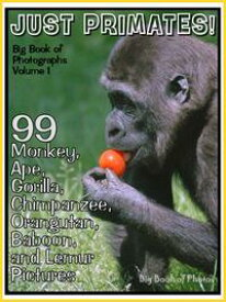 99 Pictures: Just Primate Photos! Big Book of Monkey, Ape, Gorilla, Chimpanzee, Orangutan, Baboon, and Lemur Photographs, Vol. 1【電子書籍】[ Big Book of Photos ]