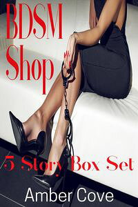 BDSMShop5StoryBoxSet
