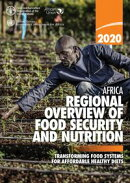 Africa Regional Overview of Food Security and Nutrition 2020: Transforming Food Systems for Affordable Healt…