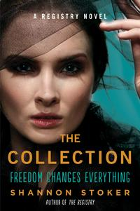 TheCollectionARegistryNovel
