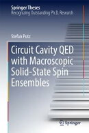 Circuit Cavity QED with Macroscopic Solid-State Spin Ensembles