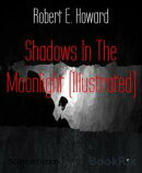 Shadows In The Moonlight (Illustrated)