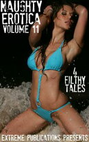Naughty Erotica Volume 11: 4 Filthy Tales