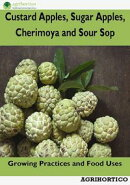 Custard Apples, Sugar Apples, Cherimoya and Sour Sop: Growing Practices and Food Uses