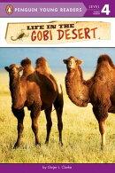 Life in the Gobi Desert
