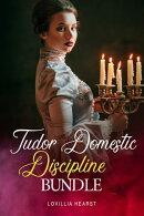 Tudor Domestic Discipline Bundle