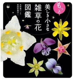 もっと美しき小さな雑草の花図鑑【電子書籍】[ 大作 晃一 ]