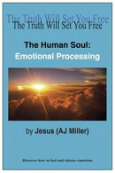 The Human Soul: Emotional Processing