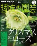 NHK 趣味の園芸 2017年1月号[雑誌]