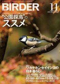 BIRDER2020年11月号【電子書籍】[ BIRDER編集部 ]