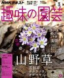 NHK 趣味の園芸 2017年3月号[雑誌]