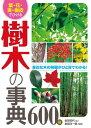 葉・花・実・樹皮でひける 樹木の事典600種【電子書籍】[ 金田初代 ]