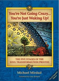 You'reNotGoingCrazy...You'reJustWakingUp!TheFiveStagesoftheSoulTransformationProcess
