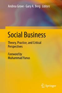 SocialBusinessTheory,Practice,andCriticalPerspectives
