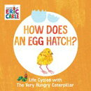 How Does an Egg Hatch?