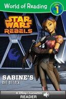 World of Reading Star Wars Rebels: Sabine's Art Attack