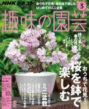 NHK 趣味の園芸 2019年3月号[雑誌]