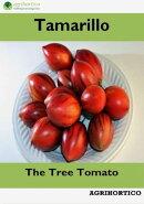 Tamarillo: The Tree Tomato