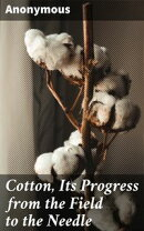 Cotton, Its Progress from the Field to the Needle