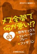 メス全開で何が悪い!? vol.3~野外セックス、エレベータープレー、ファザコン~