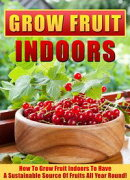 Grow Fruit Indoors How To Grow Fruit Indoors To Have A Sustainable Source Of Fruits All Year Round!