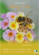 Honey Trap 〜ハニートラップ〜