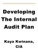Developing The Internal Audit Plan