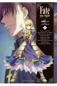 Fate/staynight(17)