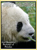 Just Panda Photos! Big Book of Panda Photographs & Pictures Vol. 1