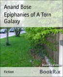 Epiphanies of A Torn Galaxy