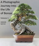 A Photographic Journey Into The Life of Bonsai