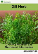 Dill Herb: Growing Practices and Nutritional Information