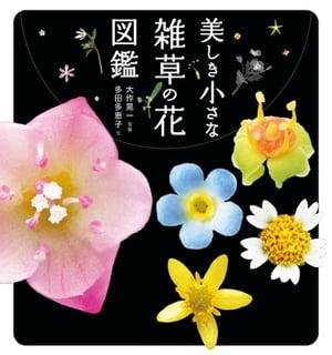 美しき小さな雑草の花図鑑【電子書籍】[ 多田 多恵子 ]
