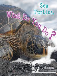 SeaTurtles,WhatDoYouDo?
