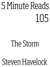 The Storm【電子書籍】[ Steven Havelock ]
